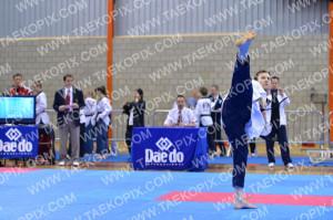 Taekwondo_BelgiumOpen2015_A2086